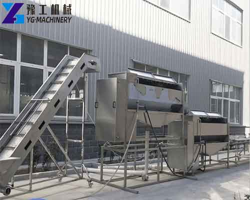 YG French Fries Production Line